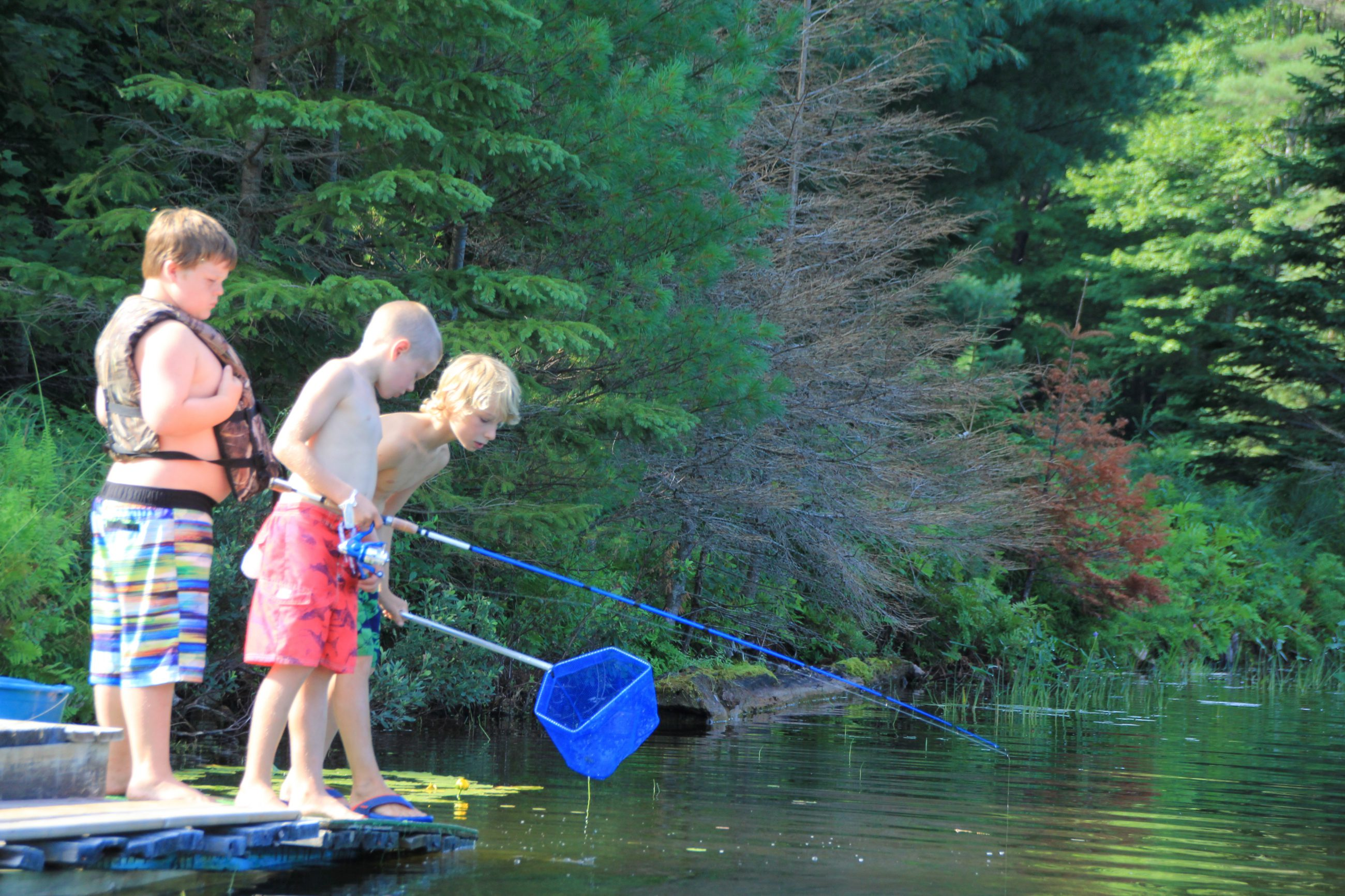 Campers using dip nets looking for fish.